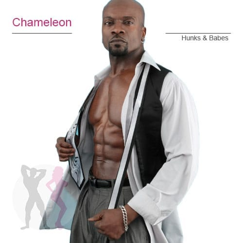 DCM-Chameleon-stripper