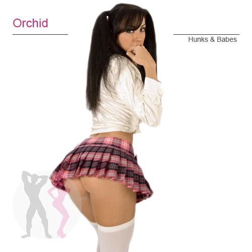 INF-Orchid-dancer